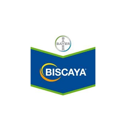 Biscaya 240 OD ( 1 si 5 l )