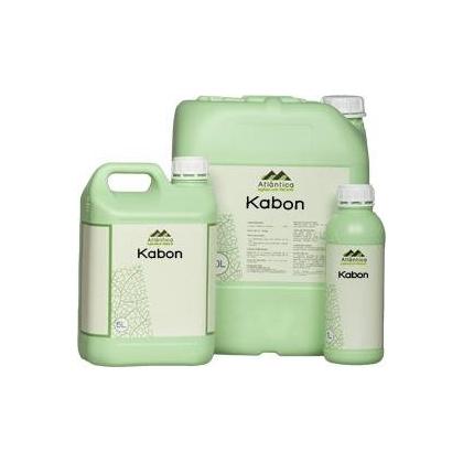 Kabon