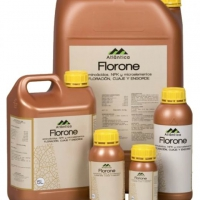 Regulator de crestere - FLORONE