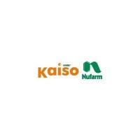 Kaiso Sorbie 5 WG (1.5g, 15g, 300g, 1 kg )